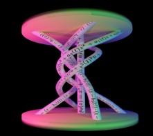 HIL2019 web image